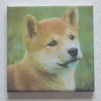 写真陶板既成タイル